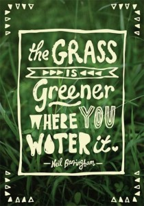 grass is not greener on the other side