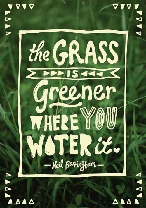 dating grass is greener